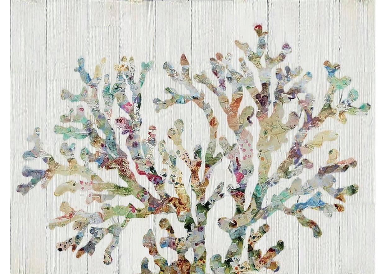 agave-quadri_0120_AG080038