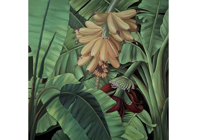 agave-quadri_0128_AG080023