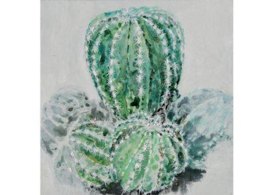 agave-quadri_0010_AG100052