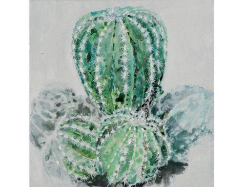 Cactus e dintorni 1 – 50 x 50 cm