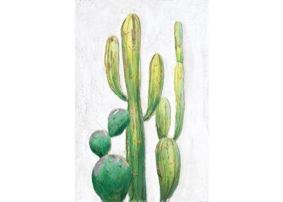 agave-quadri_0060_AG100002