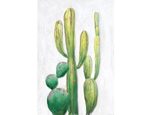 Magic cactus 2 – 60 x 90 cm